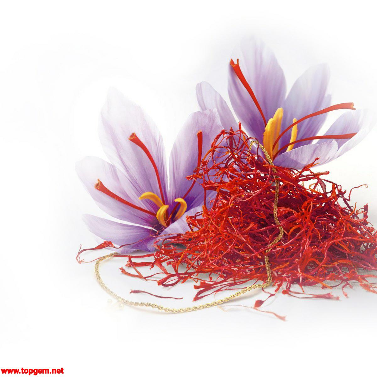Negin Saffron