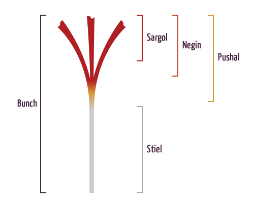 saffron type